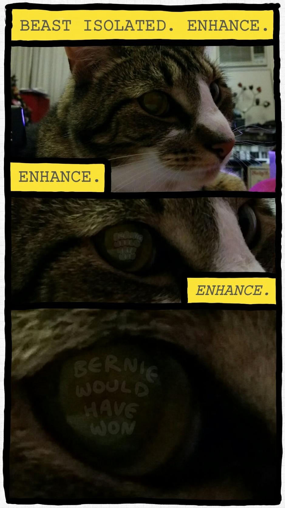 ENHANCE. FOREVER